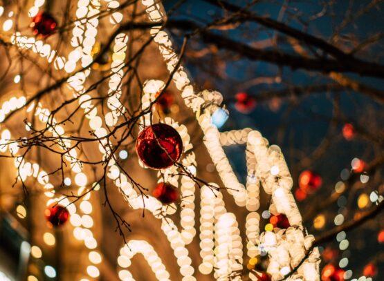 Christmas decoration and Christmas lights